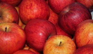 pommes recettes économiques