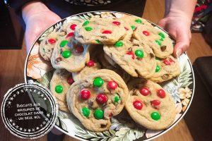 Biscuits aux brisures de chocolat dans un seul bol