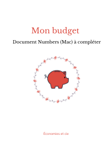 Mon budget 2021 Numbers